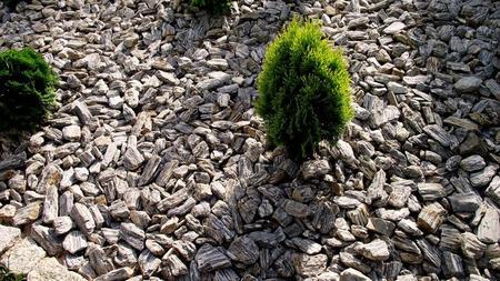 KORA KAMIENNA 11-32 miro les foyers, kamień kraków, ogody kraków, kamienień ogrodowy miro les foyers